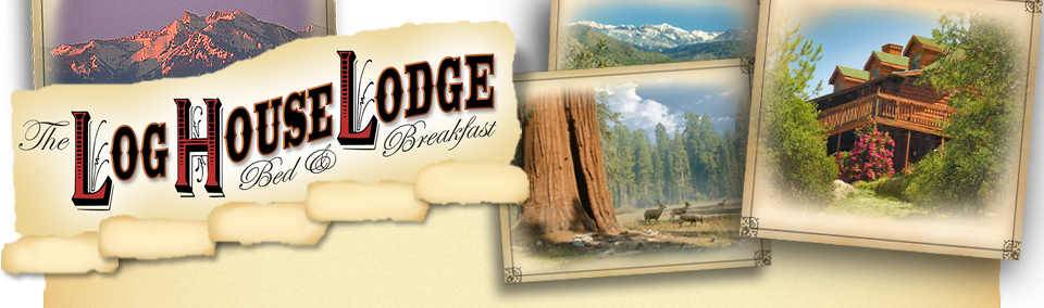 Sequoia Lodging Header